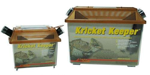 Lucky Reptile Kricket Keeper 18x11x16 cm