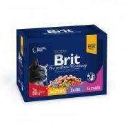 Brit PREMIUM CAT POUCHES FAMILY PLATE 12x100 g